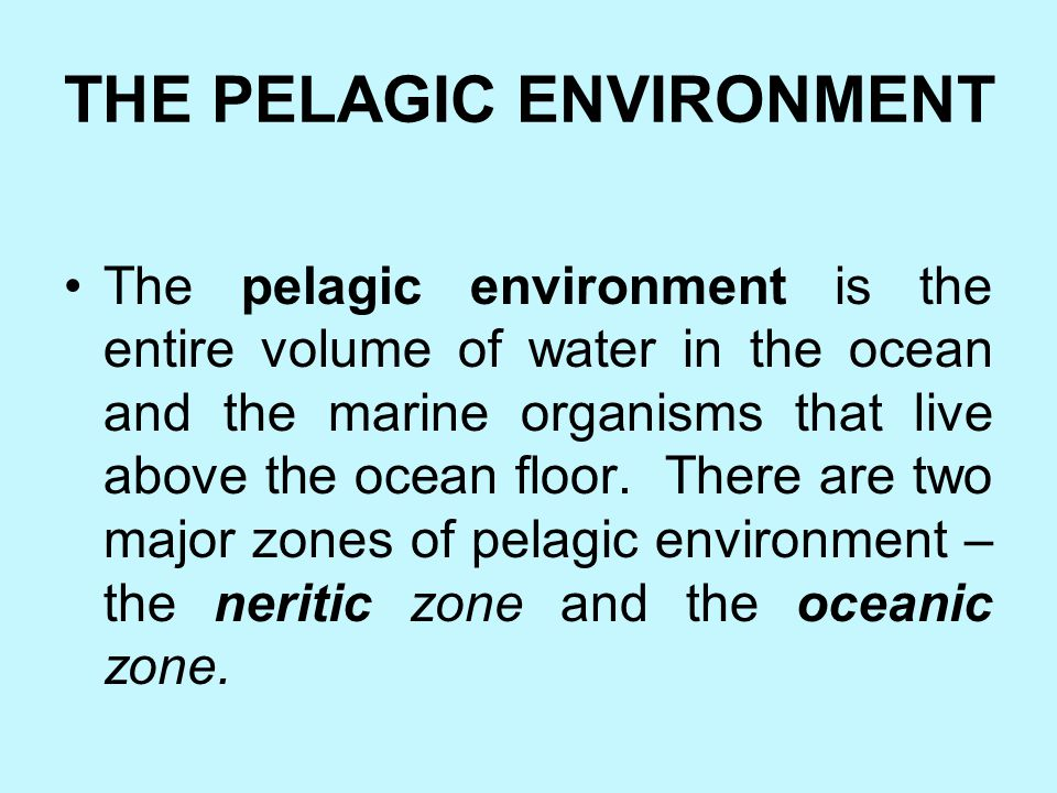 THE PELAGIC ENVIRONMENT