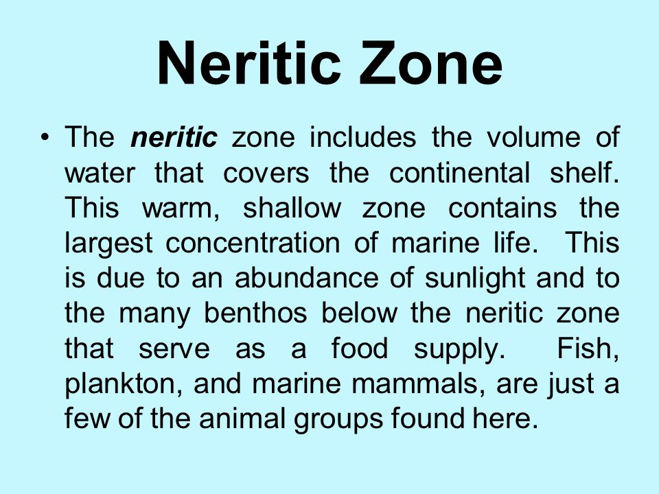 Neritic Zone
