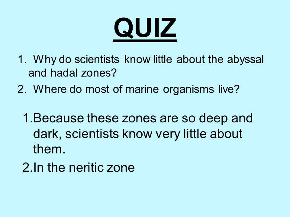 QUIZ 1. Why do scientists know little about the abyssal and hadal zones 2. Where do most of marine organisms live