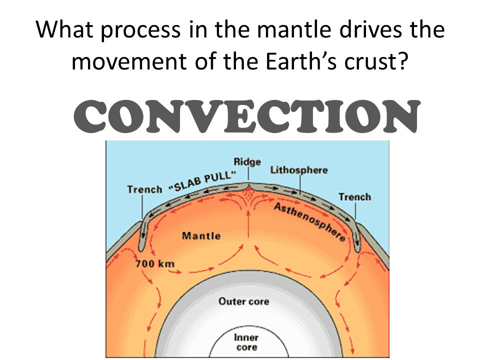 What process in the mantle drives the movement of the Earth's crust