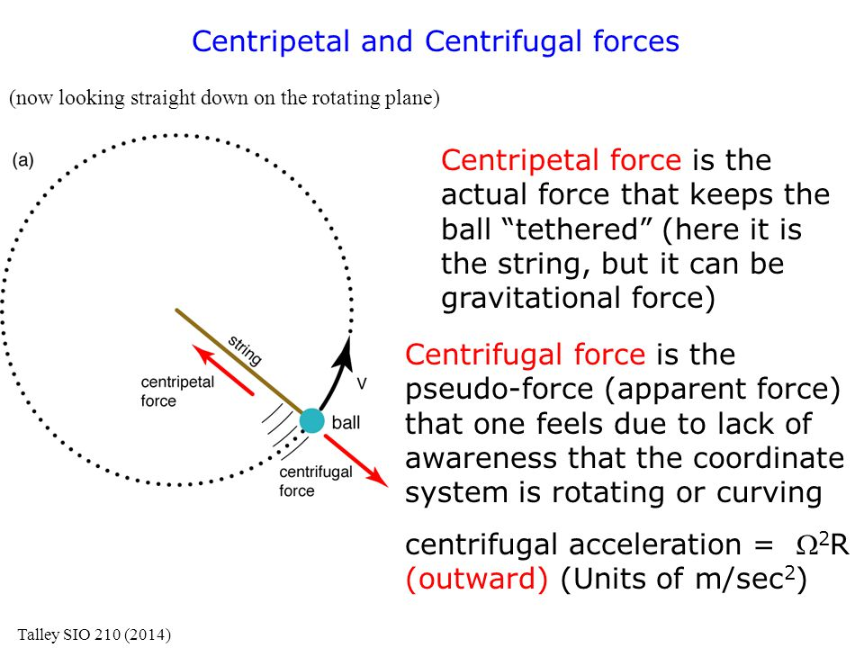 Centripetal and Centrifugal forces