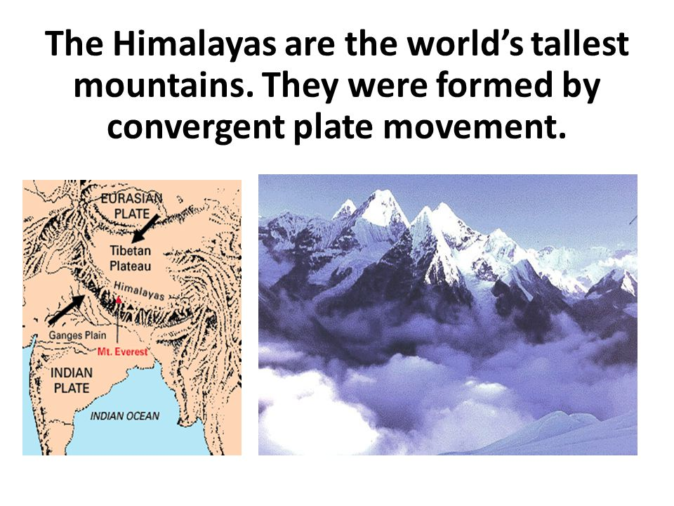 The Himalayas are the world's tallest mountains