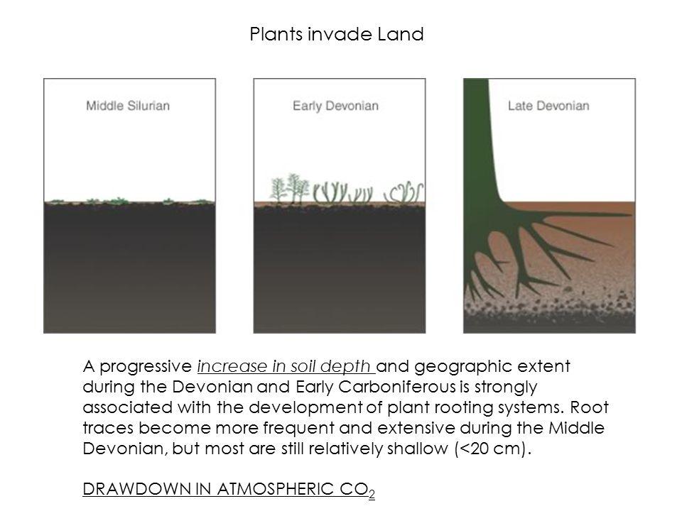 Plants invade Land