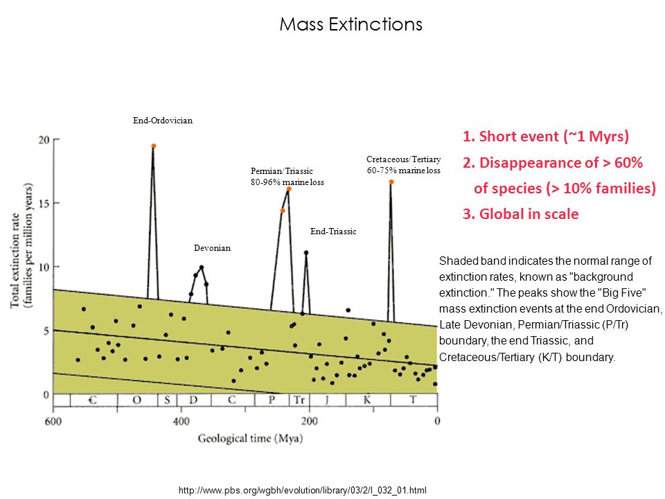 Mass Extinctions 1. Short event (~1 Myrs) 2. Disappearance of > 60%