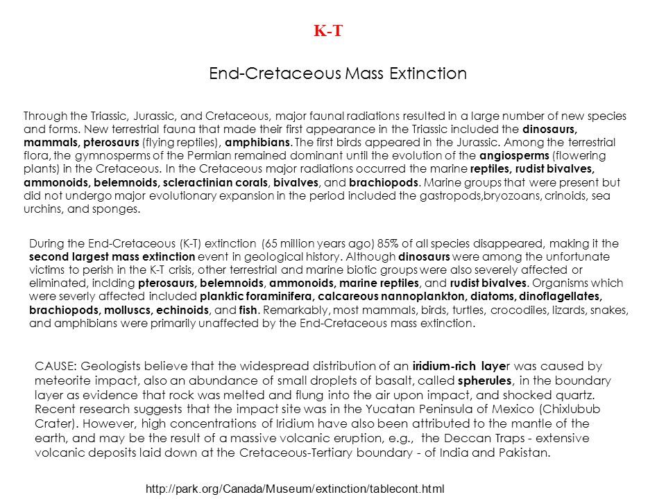 End-Cretaceous Mass Extinction
