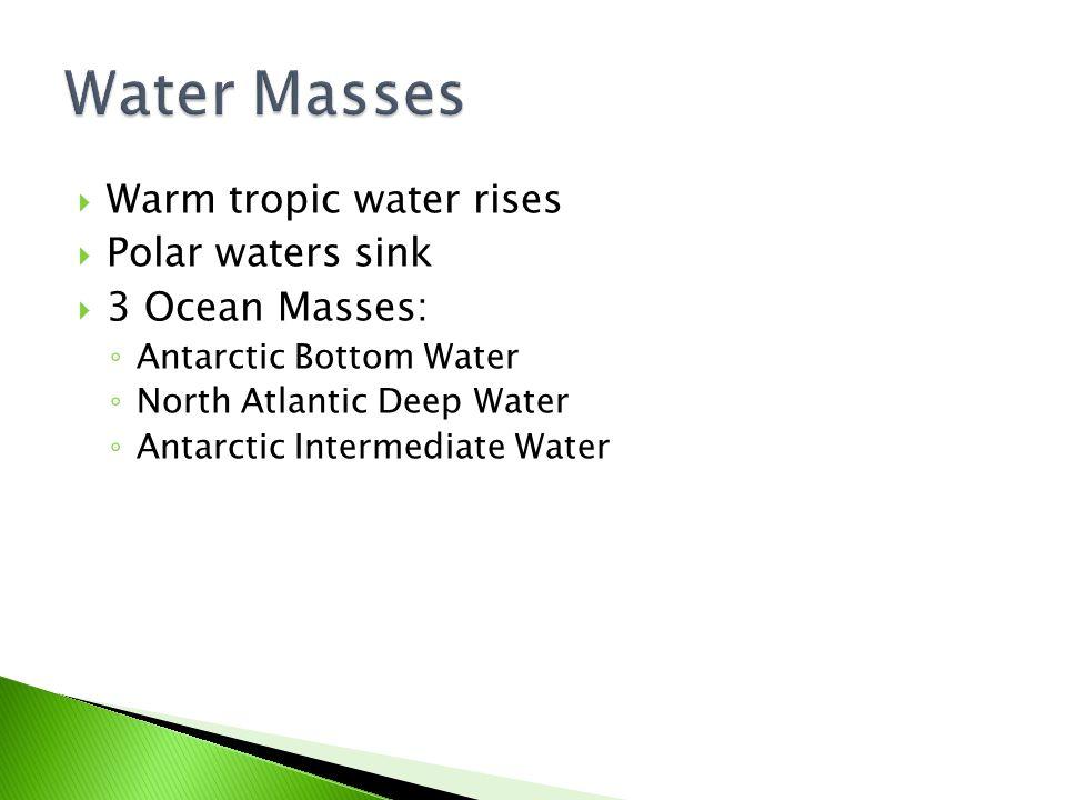 Water Masses Warm tropic water rises Polar waters sink 3 Ocean Masses: