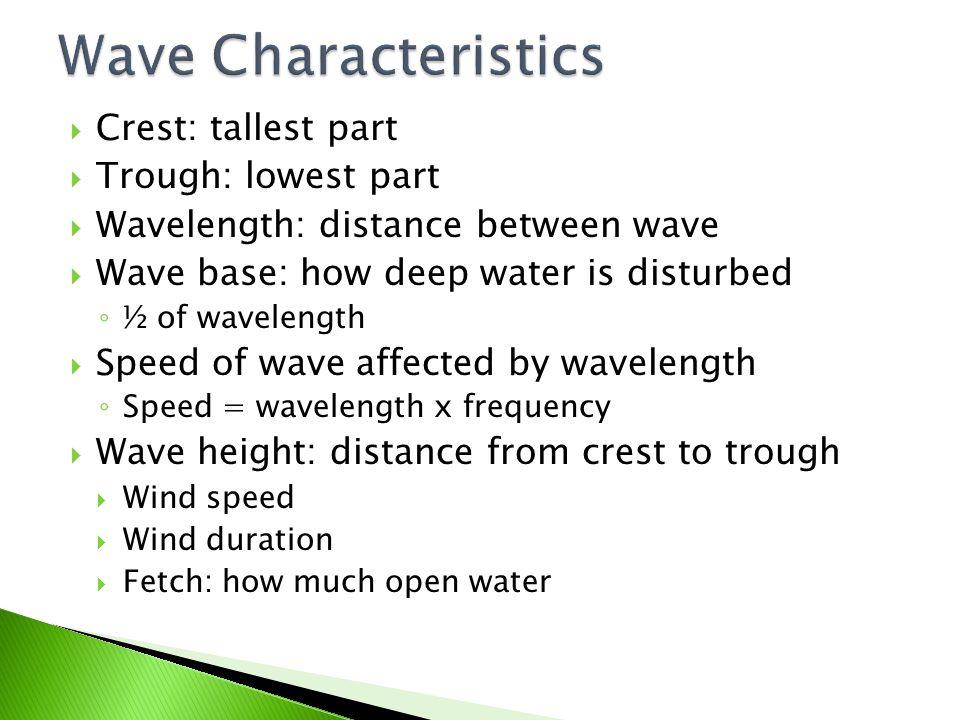 Wave Characteristics Crest: tallest part Trough: lowest part