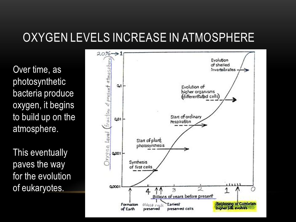 Oxygen levels increase in atmosphere
