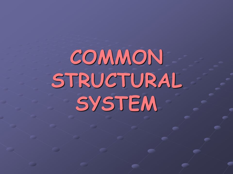 COMMON STRUCTURAL SYSTEM