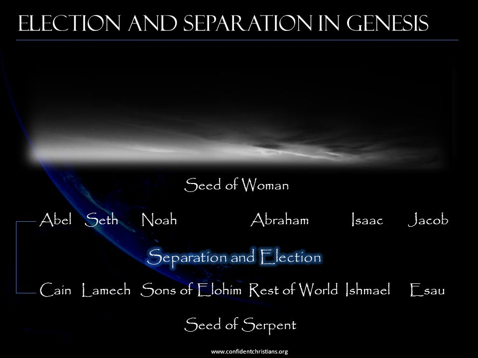 Election and Separation in Genesis