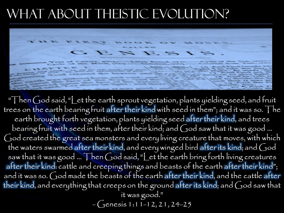 What About Theistic Evolution