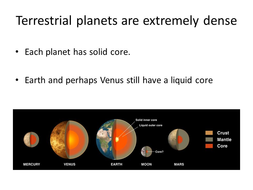 Terrestrial planets are extremely dense