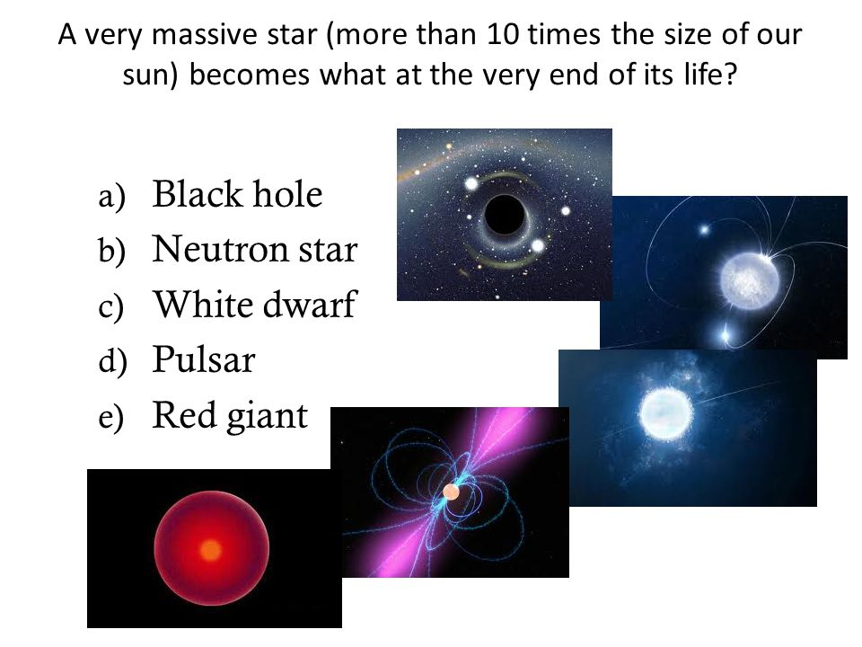 Black hole Neutron star White dwarf Pulsar Red giant