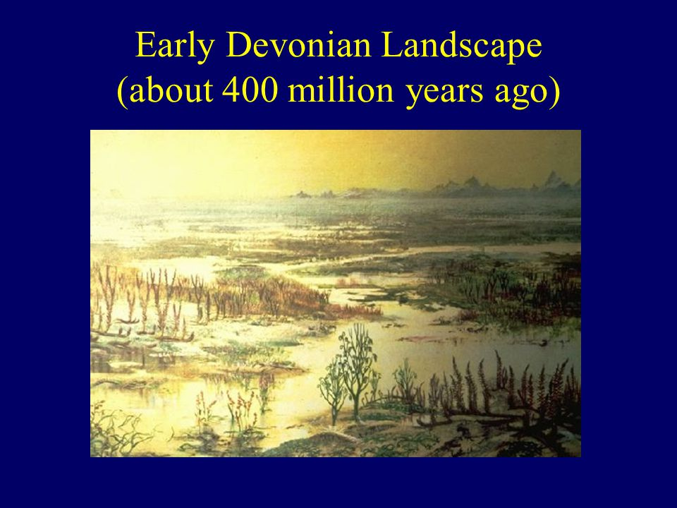Early Devonian Landscape (about 400 million years ago)