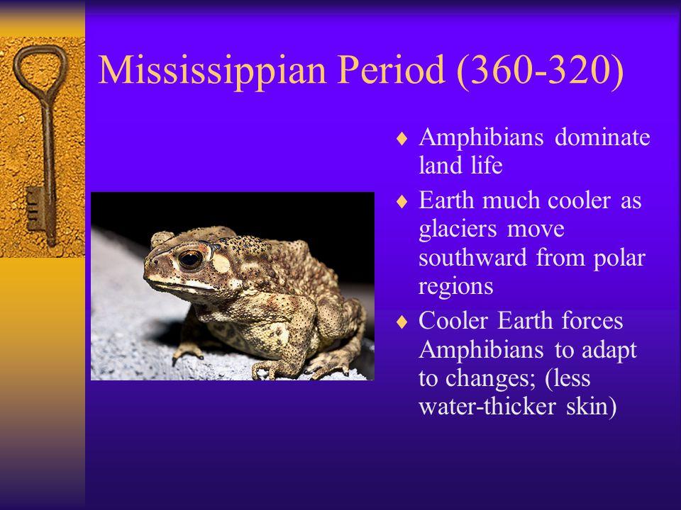 Mississippian Period (360-320)