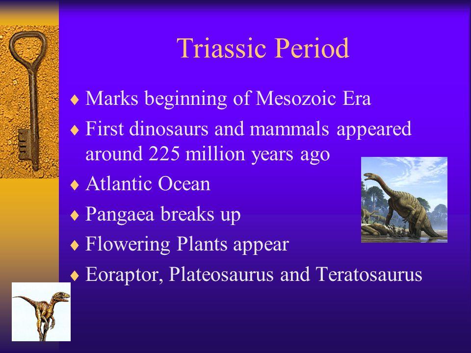 Triassic Period Marks beginning of Mesozoic Era