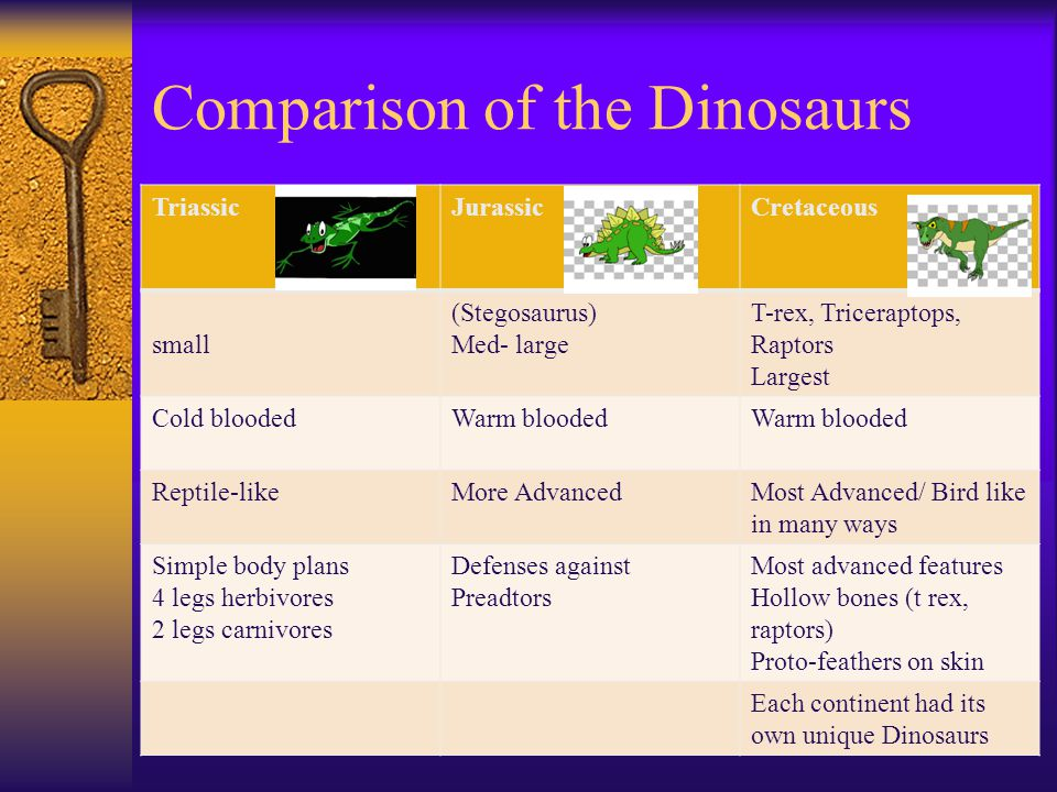 Comparison of the Dinosaurs