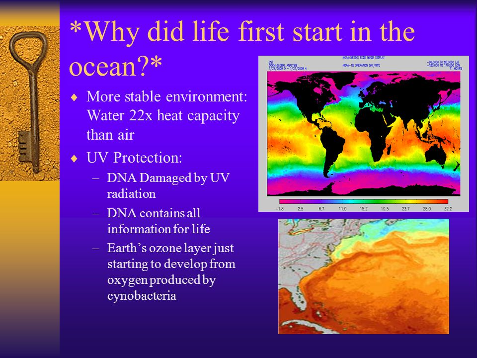 *Why did life first start in the ocean *