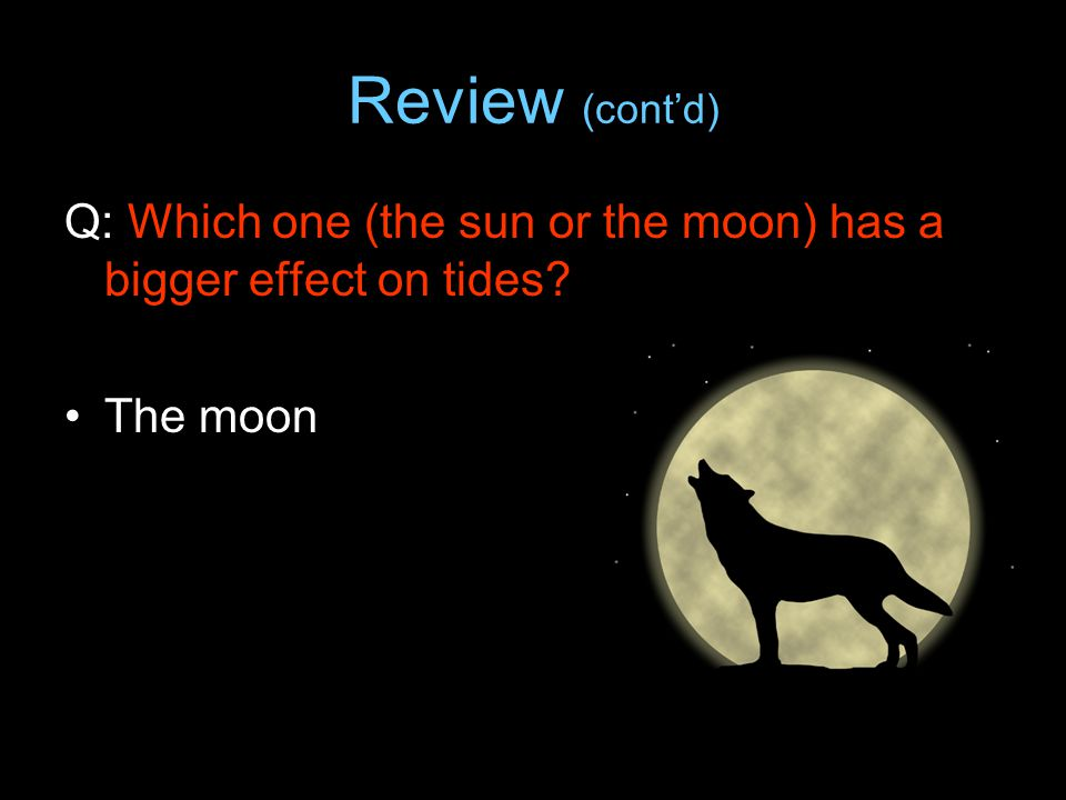 Review (cont'd) Q: Which one (the sun or the moon) has a bigger effect on tides The moon