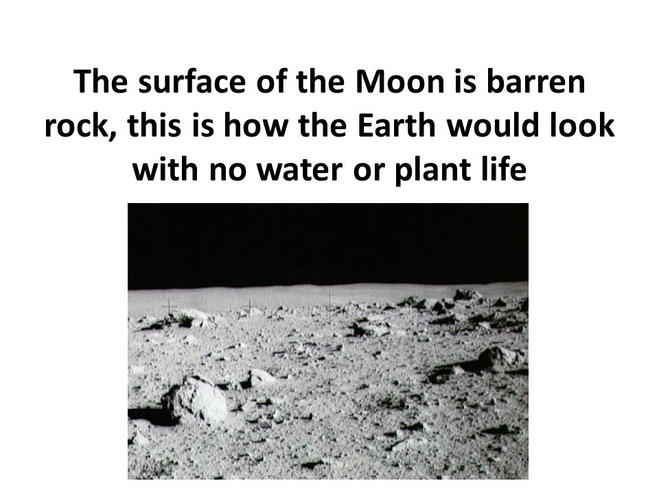 The surface of the Moon is barren rock, this is how the Earth would look with no water or plant life
