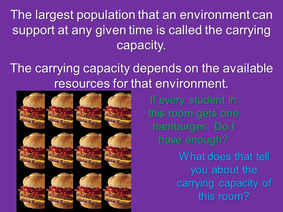 The largest population that an environment can support at any given time is called the carrying capacity.