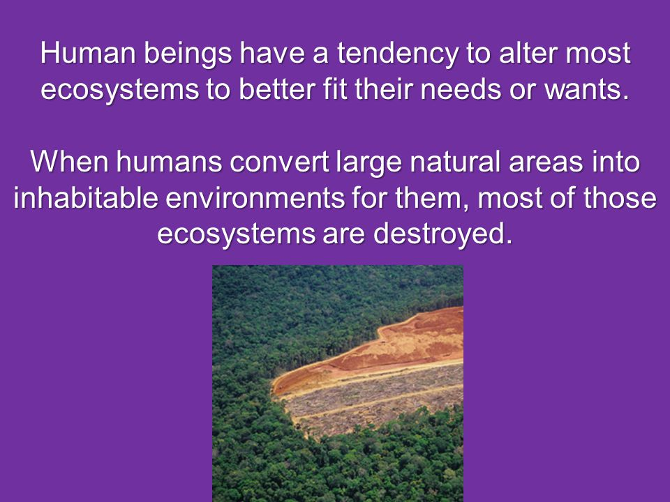 Human beings have a tendency to alter most ecosystems to better fit their needs or wants.