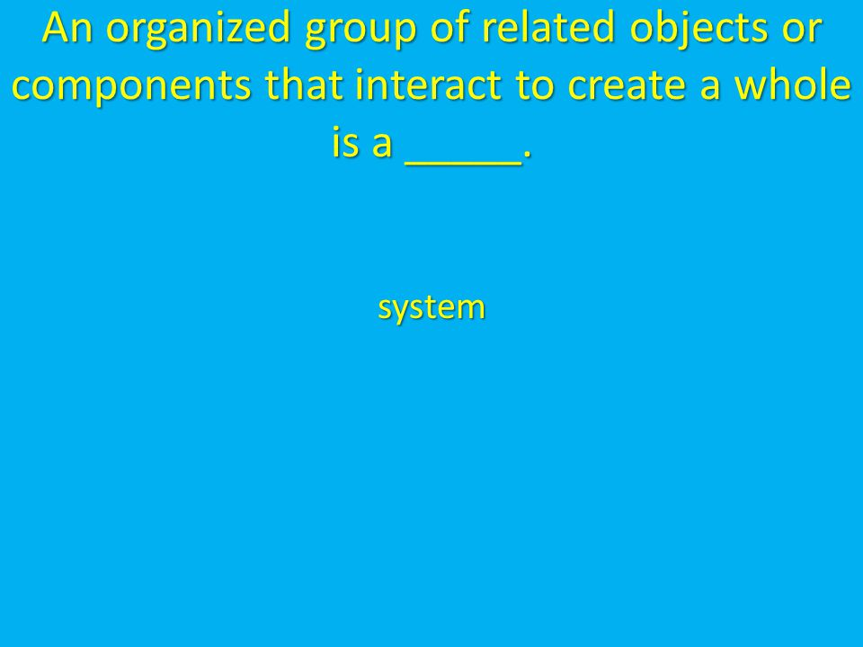 An organized group of related objects or components that interact to create a whole is a _____.