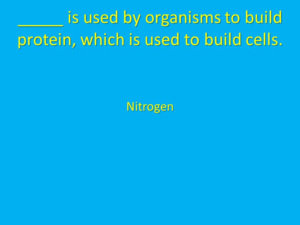 _____ is used by organisms to build protein, which is used to build cells.
