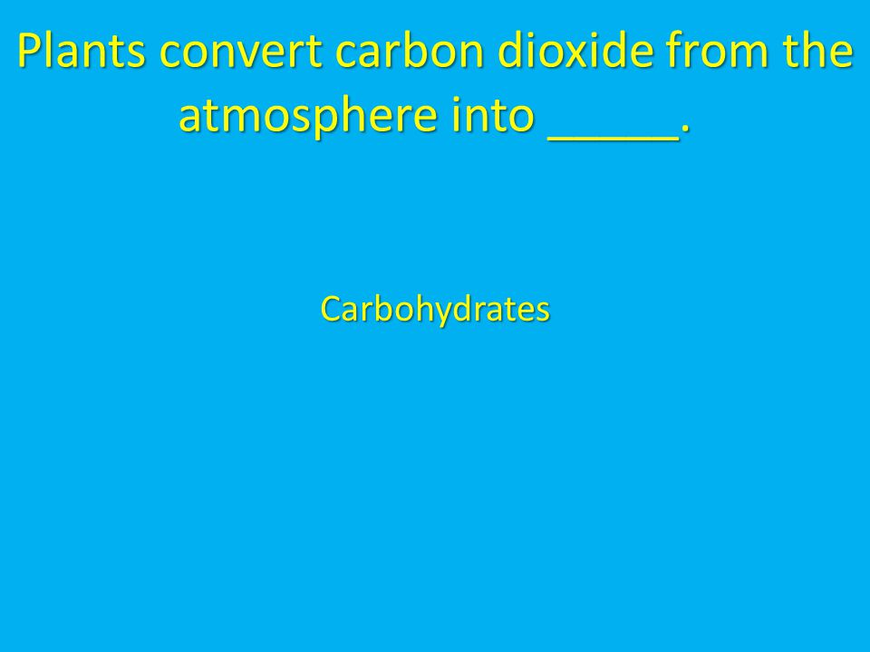 Plants convert carbon dioxide from the atmosphere into _____.