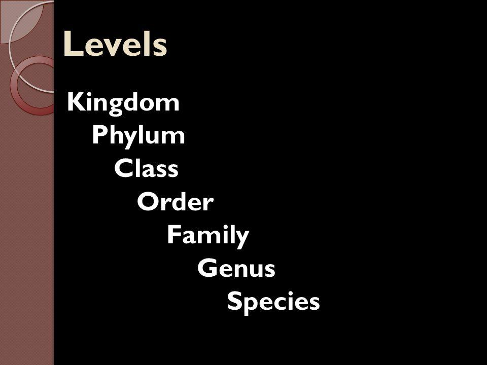 Levels Kingdom Phylum Class Order Family Genus Species