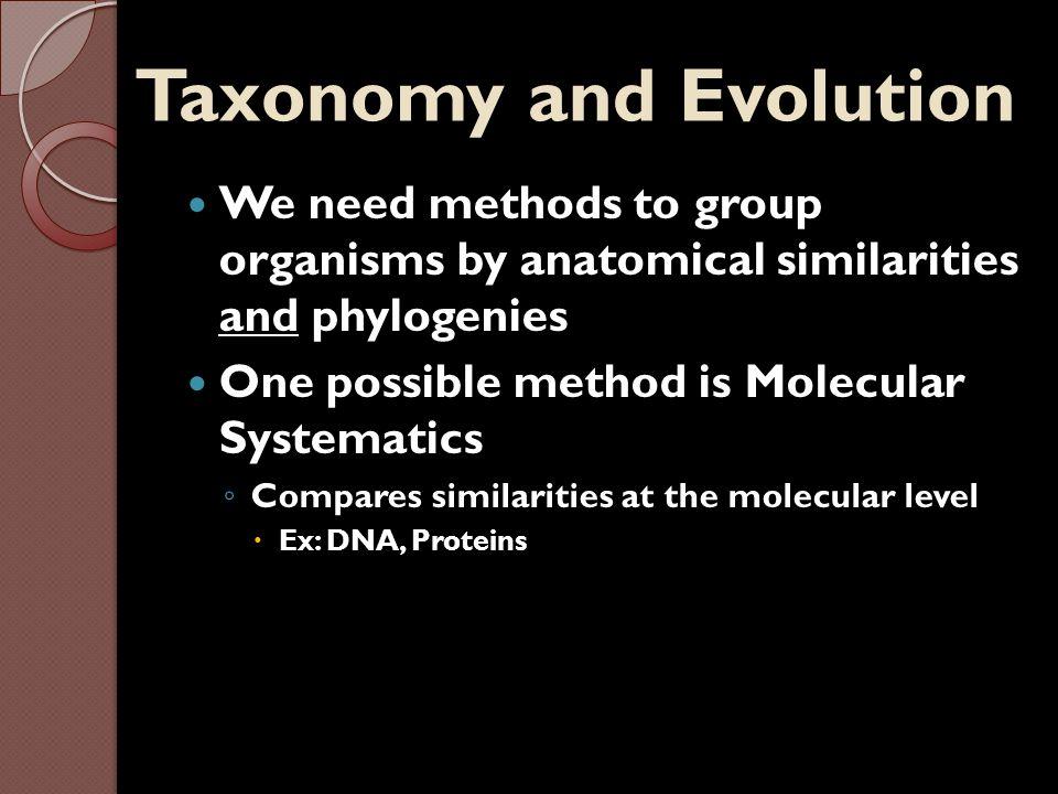 Taxonomy and Evolution