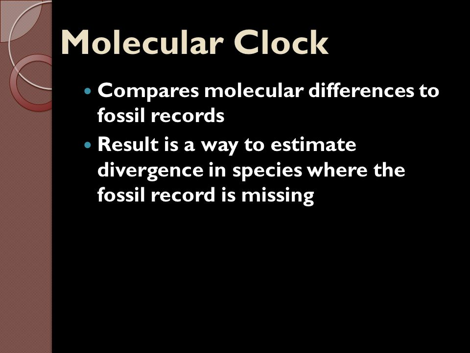 Molecular Clock Compares molecular differences to fossil records