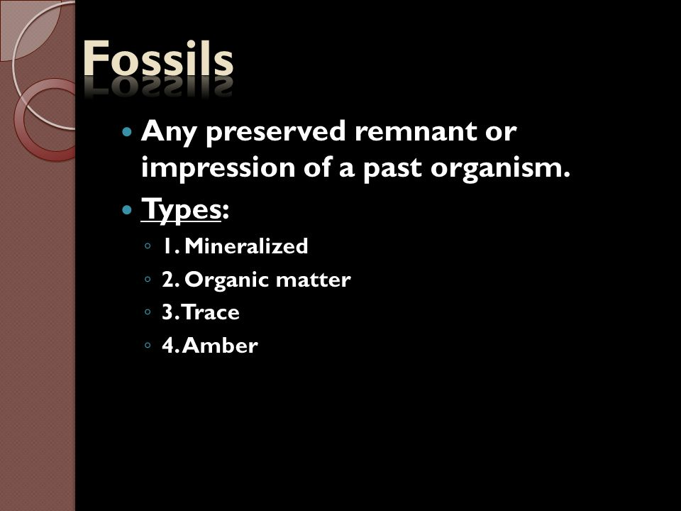 Fossils Any preserved remnant or impression of a past organism. Types: