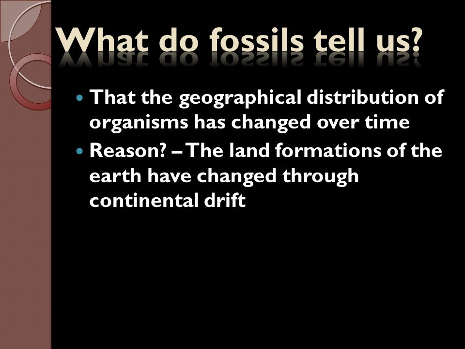 What do fossils tell us That the geographical distribution of organisms has changed over time.