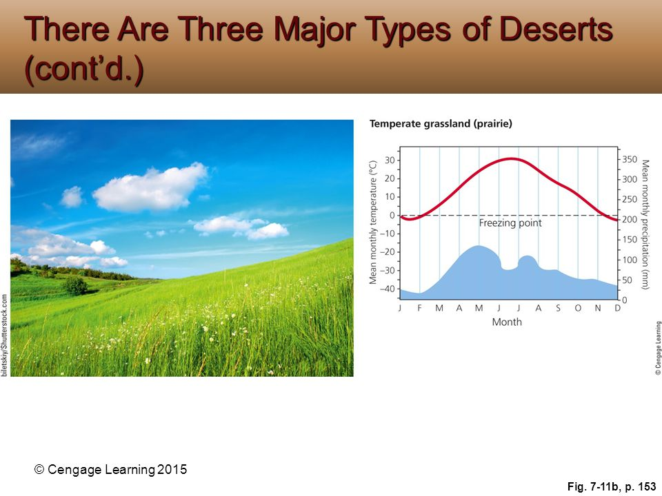 There Are Three Major Types of Deserts (cont'd.)