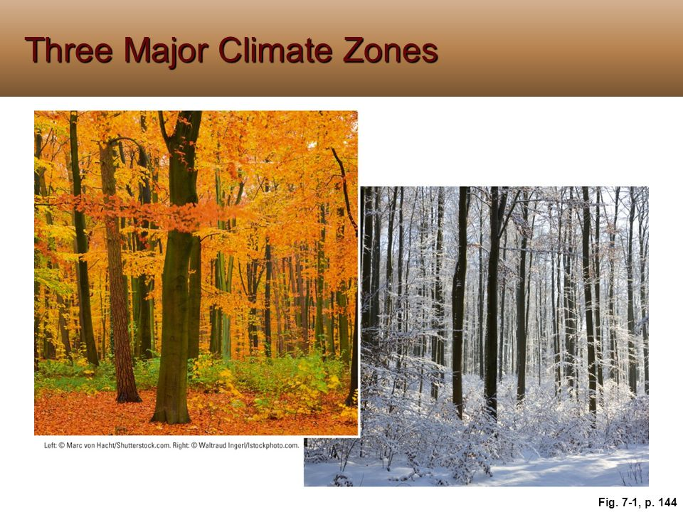 Three Major Climate Zones