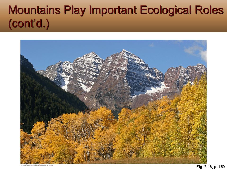 Mountains Play Important Ecological Roles (cont'd.)