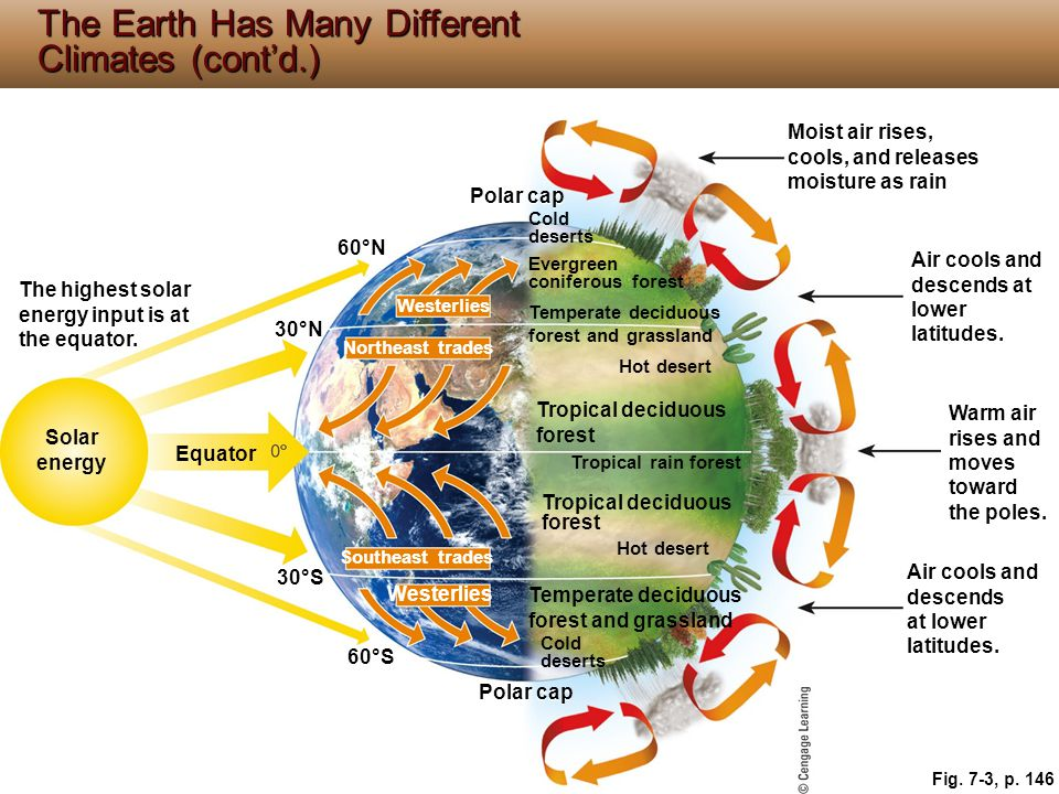 The Earth Has Many Different Climates (cont'd.)