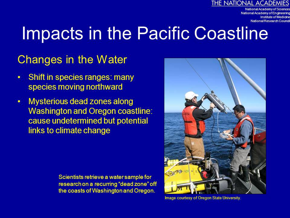 Impacts in the Pacific Coastline