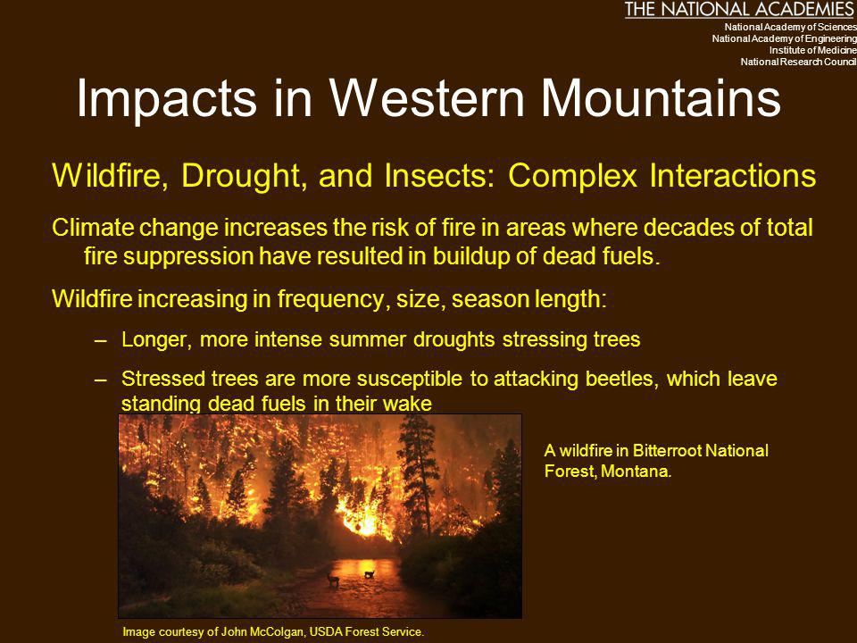 Impacts in Western Mountains