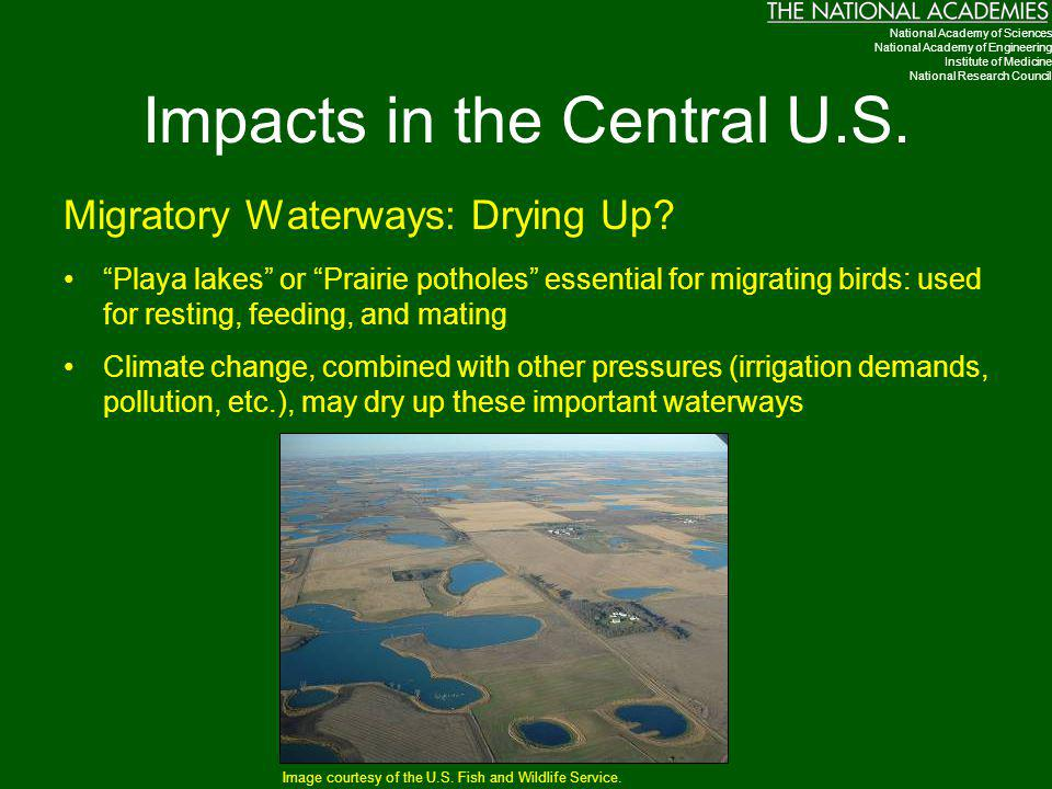 Impacts in the Central U.S.
