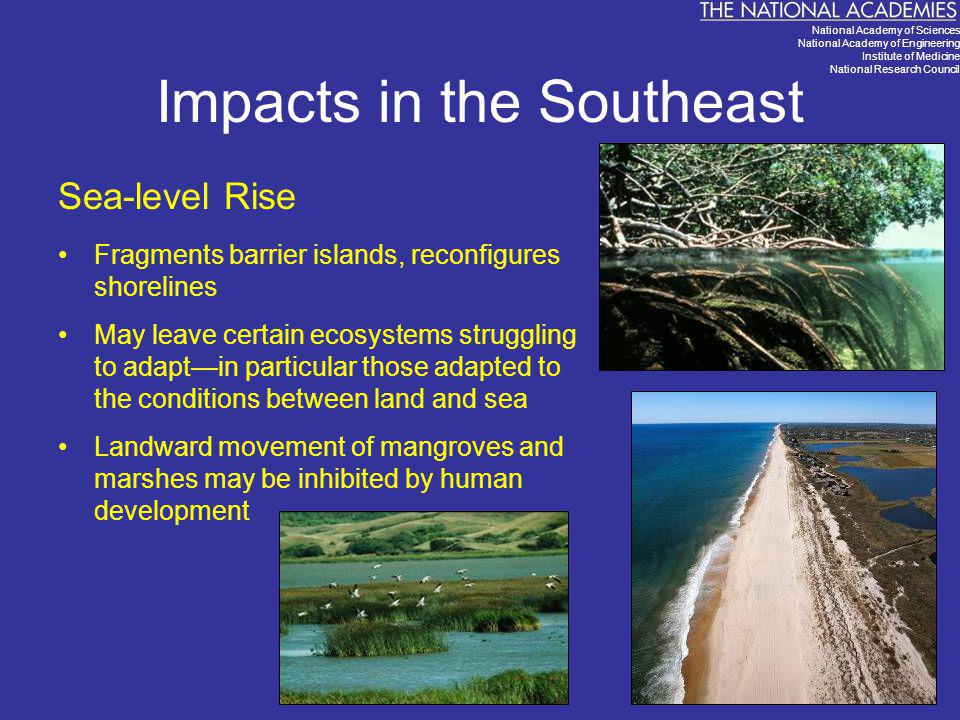 Impacts in the Southeast