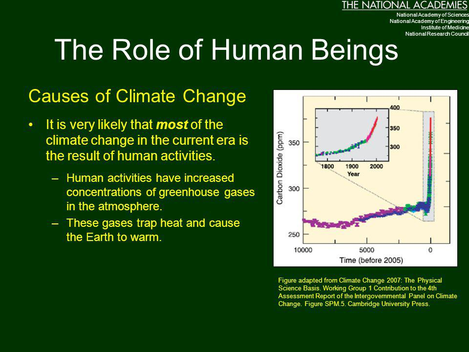 The Role of Human Beings