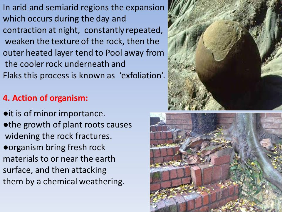 In arid and semiarid regions the expansion