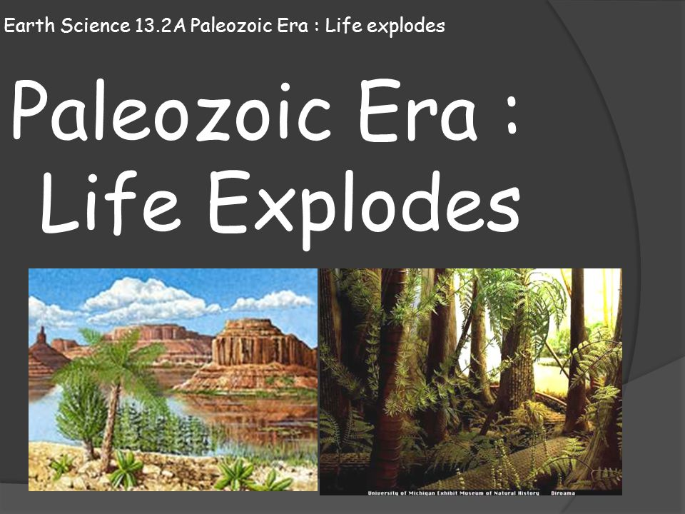 Earth Science 13.2A Paleozoic Era : Life explodes