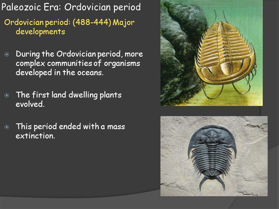 Paleozoic Era: Ordovician period