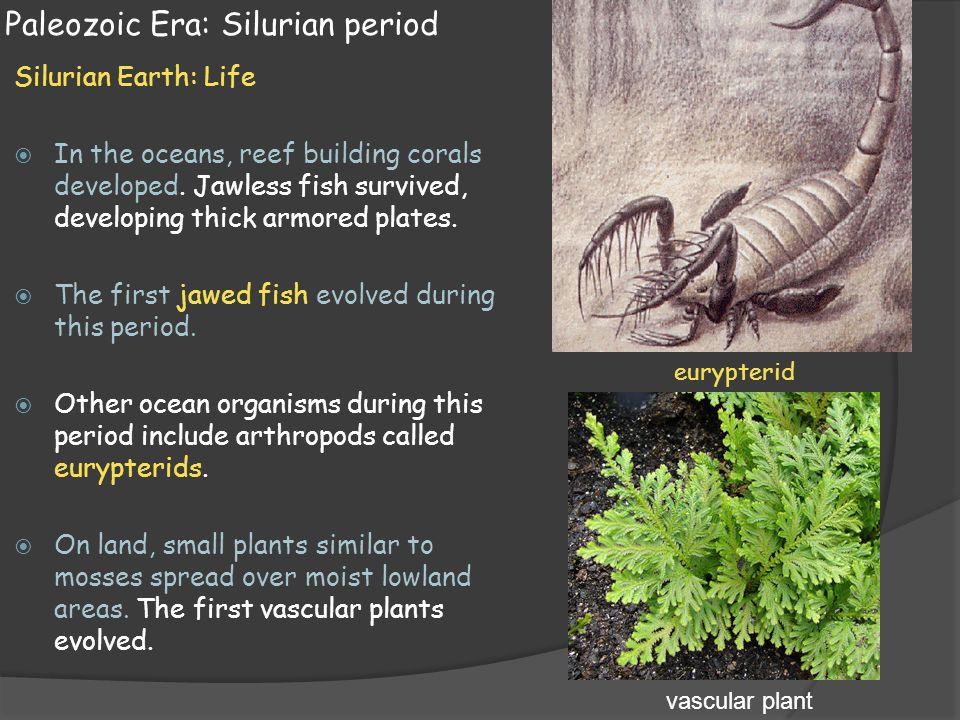 Paleozoic Era: Silurian period