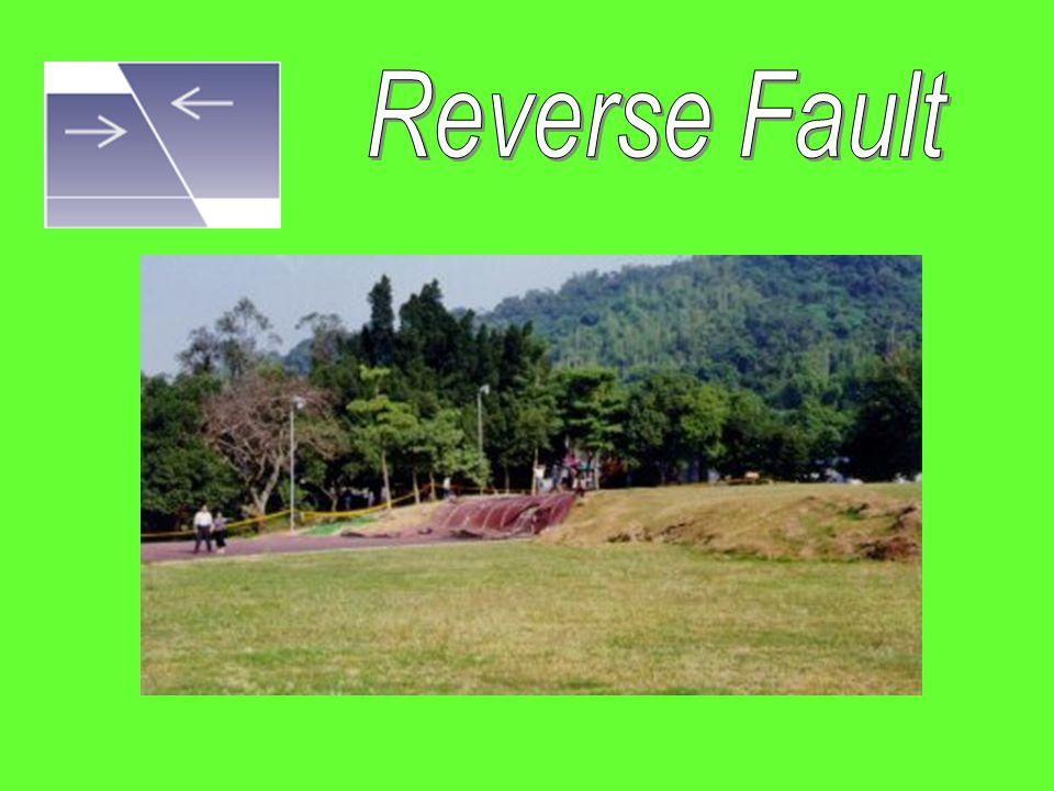 Reverse Fault