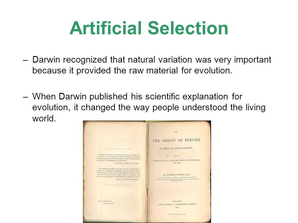Artificial Selection Darwin recognized that natural variation was very important because it provided the raw material for evolution.