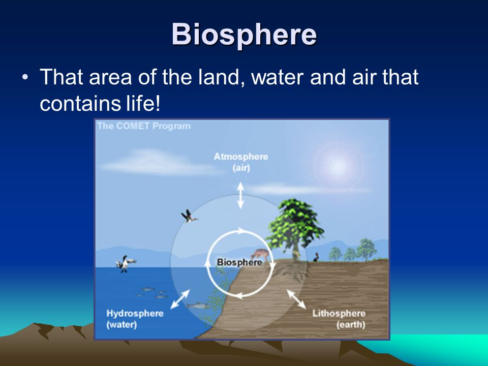 Biosphere That area of the land, water and air that contains life!